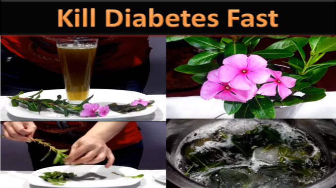 Halki Diabetes Remedy Review: Hype Or Assist?
